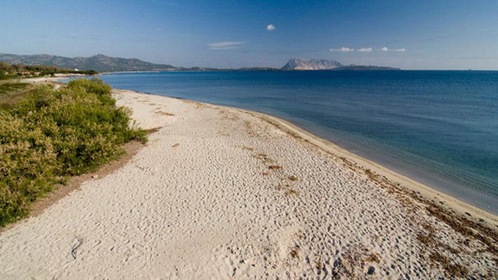 Residence San Teodoro 1 - Spiaggia Cala D'ambra 3
